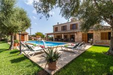 Country house in Porto Petro - Finca Domingo »beautiful traditional finca in calm location, walking distance to the beach